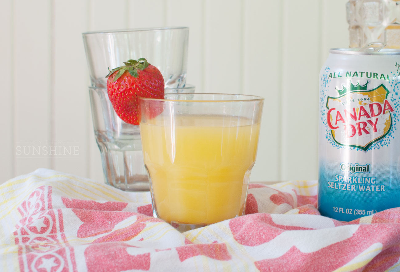Three Cocktails with Canada Dry Sparkling Seltzer Water featured by top US food and drink blogger, Miss Molly Moon