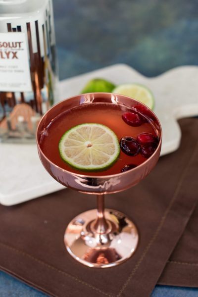 | Cranberry Cocktail Recipe: Festive Cranberry Spice Fizz with Absolut Elyx featured by top US food blogger, Miss Molly Moon